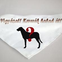 kendő kutyáknak vicces felirattal