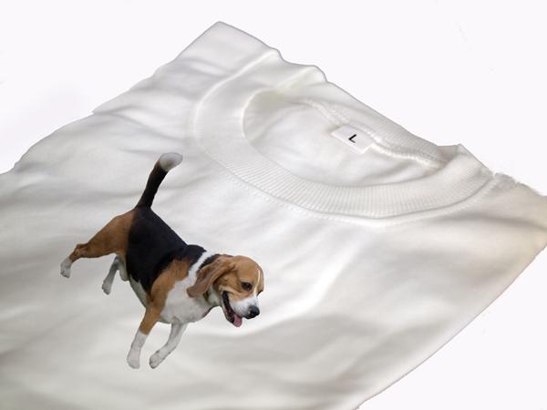 Póló beagle képpel