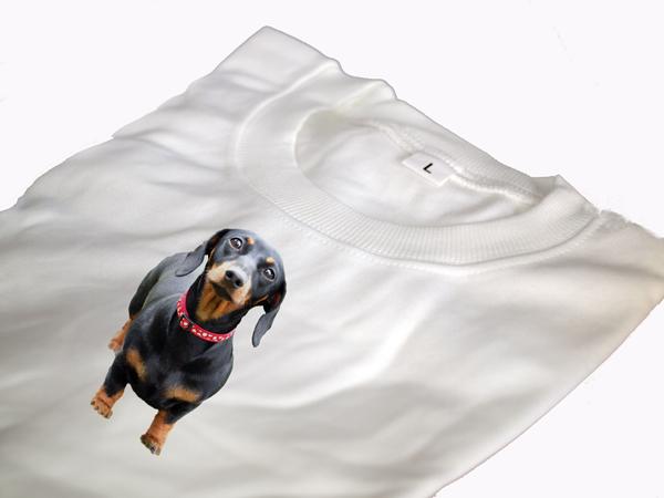 Tacskó képes póló