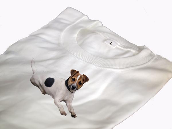 Terrier képes póló