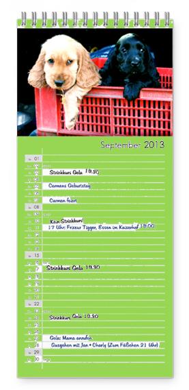 Kutyás falinaptár - jegyzetelési felülettel
