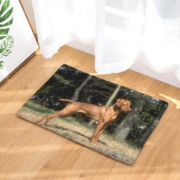 Kutya képes lábtörlő / papucstartó / kádkilépő