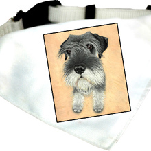 Kutyakendő Schnauzer grafikával