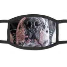 Francia bulldog pofis szájmaszk