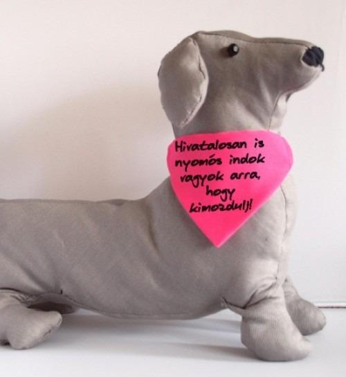 Karantén kutyakendő