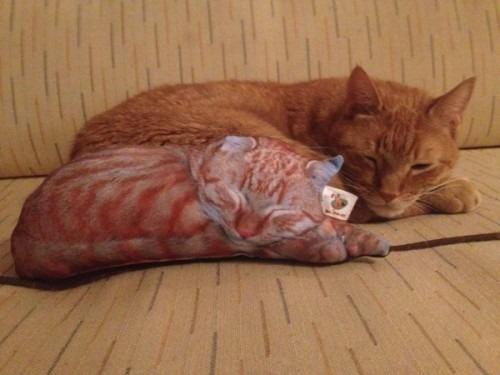 egyedi cica alakú párna