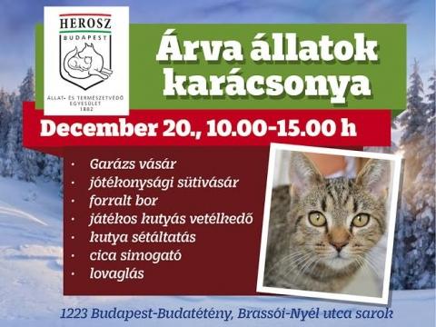 HEROSZ Budapesti Állatotthon, Karácsony