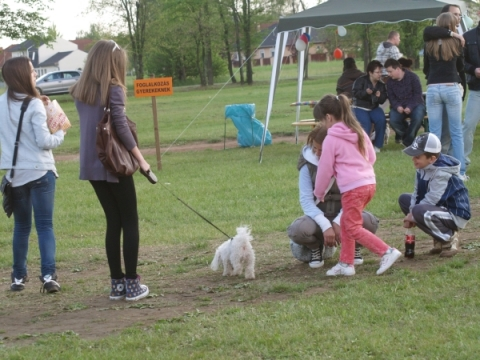 Kutyasétáltatás