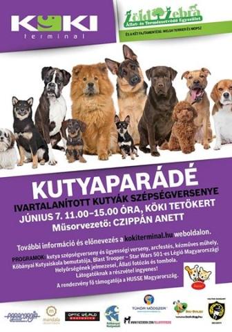 Ivartalanított kutyák szépség- és ügyességi versenye