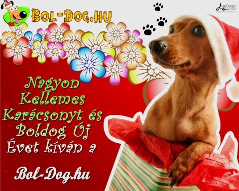 Bol-Dog karácsonyt!