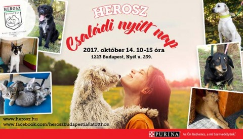 Nyílt nap a HEROSZ Budapesti Állatotthonban