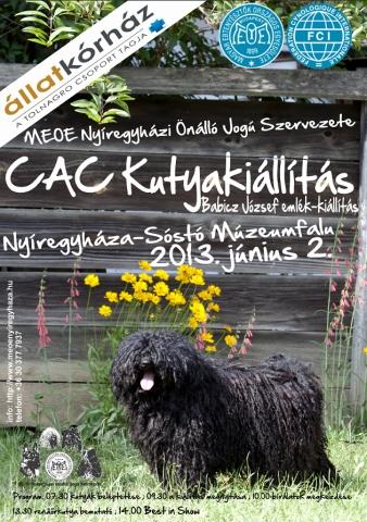MEOE CAC nyíregyházi kutyakiállítás