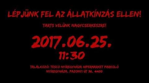 tüntetés Fülöpért nagycserkeszen