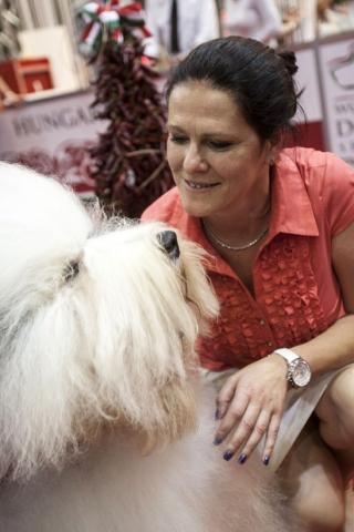 magyar kutya nyerte a világkiállítást