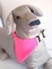 rózsaszín kutyakendő