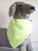 zöld kutya kendő