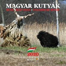 Kutyás naptár 2020 - Magyar Kutyafajták