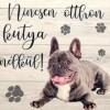Francia bulldog kutyás fa hűtőmágnes